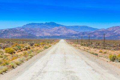 Fotomural Uma estrada de terra no Karoo que funciona ao lado das cercas da exploração agrícola.
