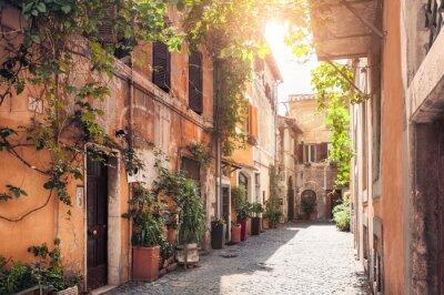 Fotomural Uma rua pitoresca em Roma, Itália