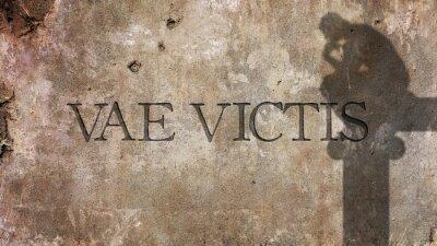Fotomural Vae Victis. Frase latina para Ai ao Vencido