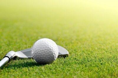 Fotomural Vamos golfe