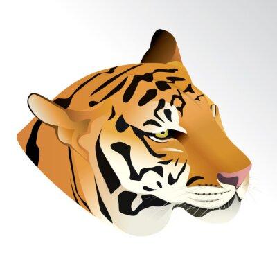 Fotomural Vector a ilustração do retrato da cabeça do tigre isolado no fundo branco.