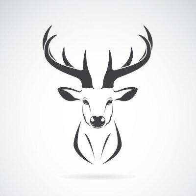 Fotomural Vector a imagem de um projeto da cabeça dos cervos no fundo branco