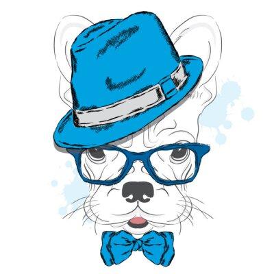 Fotomural Vetor do buldogue francês. Filhote de cachorro dos desenhos animados. Um cão em um chapéu e em óculos de sol. Filhote fofo. Hipster. Garoto. Cão de pedigree.
