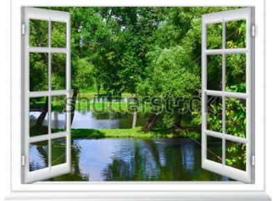 Fotomural vista da janela no corpo da água e a árvore no verão