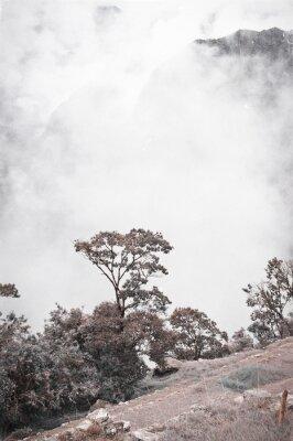 Fotomural Vista De Machu Picchu