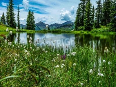 Fotomural Vista do Lago Paridise na Bacia Paridise perto Crested Butte Colorado