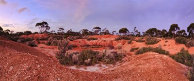 Fotomural WA Balladonia Red Soil 2 Panorama