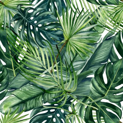 Fotomural Watercolor hand painted seamless pattern with green tropical leaves of monstera, banana tree and palm on white  background.