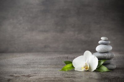 Fotomural White orchid and spa stones on the grey background.