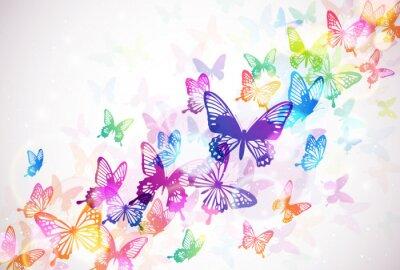 Fotomural 蝶 々
