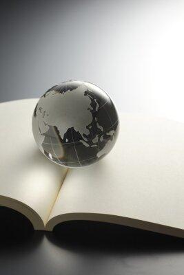 Fotomural グローバル