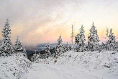 Fotomural Zimowa górach droga w