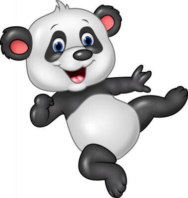 Poster Adorável bebê panda isolado no fundo branco