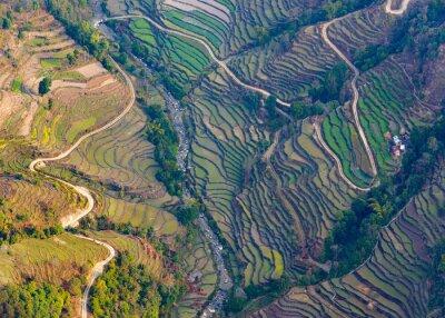 Poster Aéreo, vista, arrozal, campos, pokhara