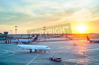 Poster Aeroporto, muitos, aviões, bonito, pôr do sol