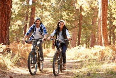 Poster Africano, americano, par, ciclismo, outono, floresta