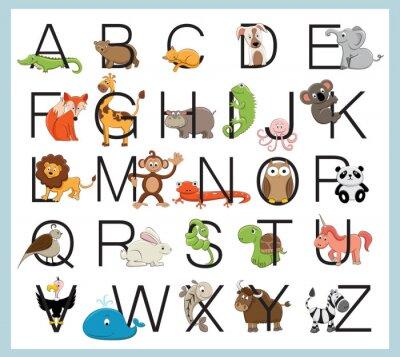 Poster Alfabeto animais