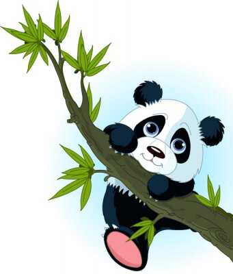 Poster Árvore gigante panda escalada