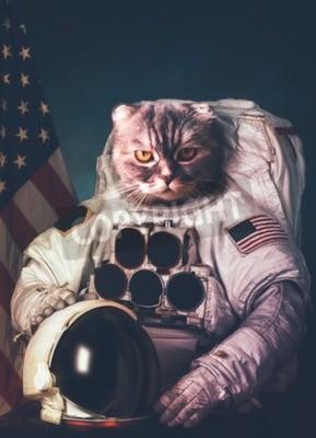 Poster Astronauta bonito do gato.