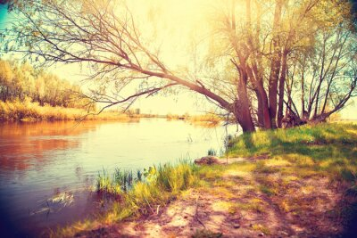 Poster Autumn landscape with a river. Beautiful scene