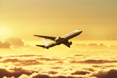 Poster Avião no céu no por do sol
