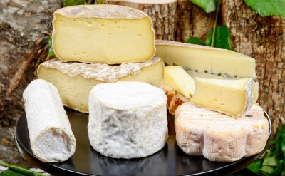 Poster bandeja com diferentes queijos franceses