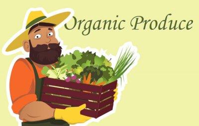 Poster Bearded fazendeiro ou jardineiro em um chapéu segurando uma caixa de madeira cheia de legumes frescos e frutas, cópia espaço à direita, EPS 8 ilustração vetorial, sem transparências