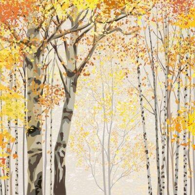 Poster Birch Grove, em tempo de outono
