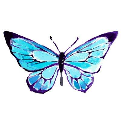 Poster borboleta, design da aguarela