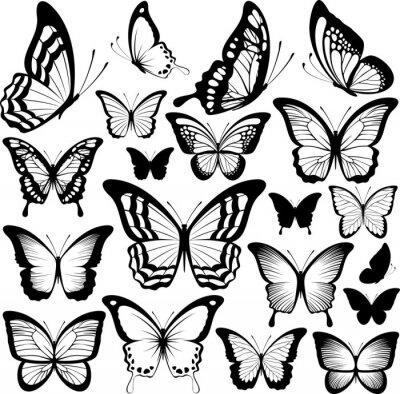 Poster borboletas silhuetas negras