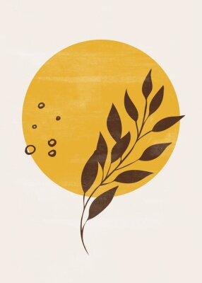 Poster Botanical vintage print boho sun moon minimalist wall art abstract home decor