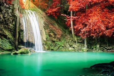 Poster Cachoeira bonita na floresta do outono