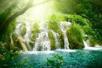 Poster Cachoeira na floresta profunda