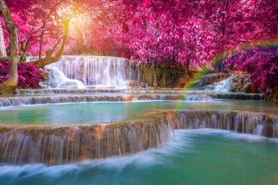 Poster Cachoeira na floresta tropical (cachoeiras de Tat Kuang Si no praba de Luang