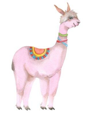 Poster Cartoon watercolor lama portrait.