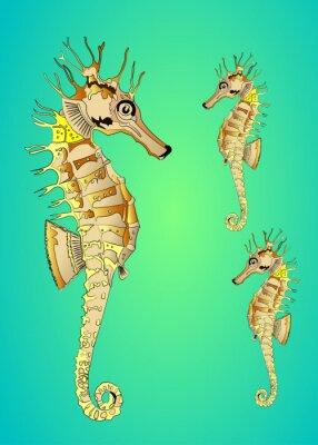 Poster cavalo-marinho