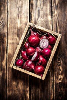 Poster Cebola vermelha fresca em uma caixa velha.
