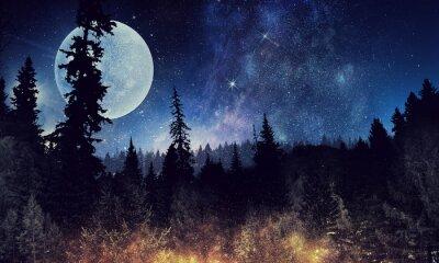 Poster Céu estrelado e lua. Meios mistos