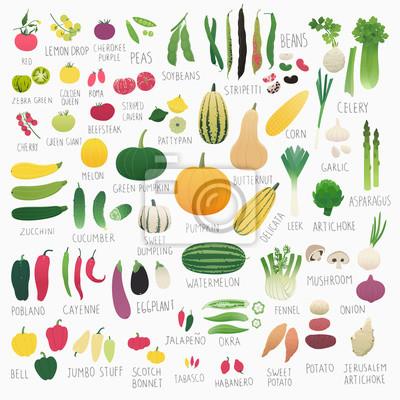 Poster Clip art, alimento, cobrança, Vol.2 :, legumes
