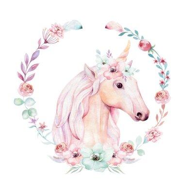 Poster Clipart bonito isolado do unicórnio da aquarela com flores. Ilustração de unicórnios de berçário. Cartaz de princesa arco-íris. Cavalo cor-de-rosa na moda do pônei dos desenhos animados.