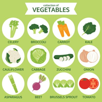 Poster colecções de produtos hortícolas, ilustração vetorial alimentos ícone, situado na