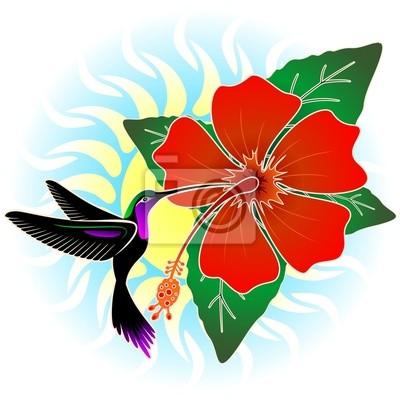 Colibri Hibiscus colibri e red hibiscus cartazes para a parede • posters flor