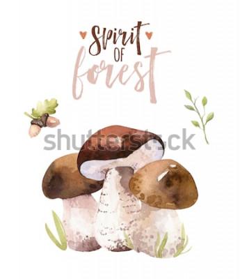 Poster Conjunto de cogumelos aquarela boêmio floresta, ilustração em vetor floresta isolada amanita, agaric, boletos, decoração de cogumelos boletos laranja-cap.