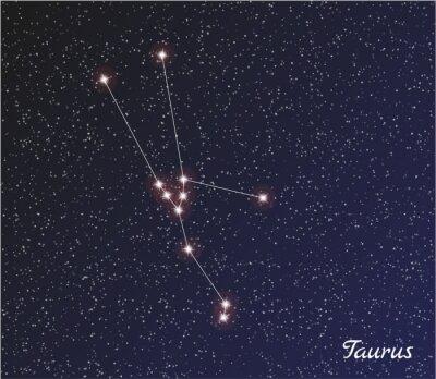 Poster constelação de Touro