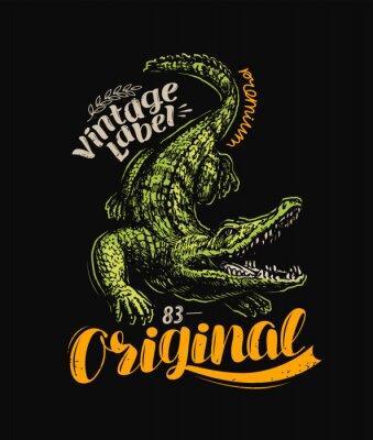 Poster Crocodile t-shirt design. Vintage poster vector illustration