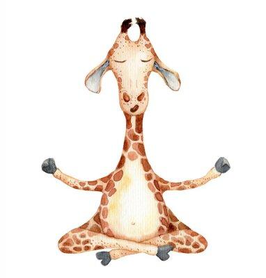 Poster Cute giraffe in yoga position  cartoon watercolor illustration animal