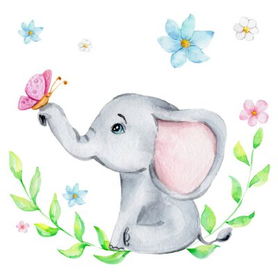 Poster Cute little elephant with pink butterfly and flowers; watercolor hand draw illustration; with white isolated background