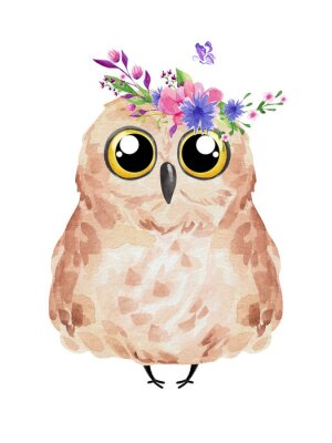 Poster Cute owl in floral wreath. Watercolor owl set