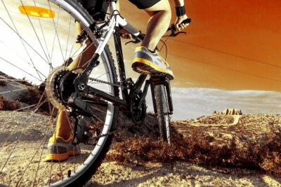 Poster Deportes. Bicicleta de Montaña y en hombre.Deporte exterior