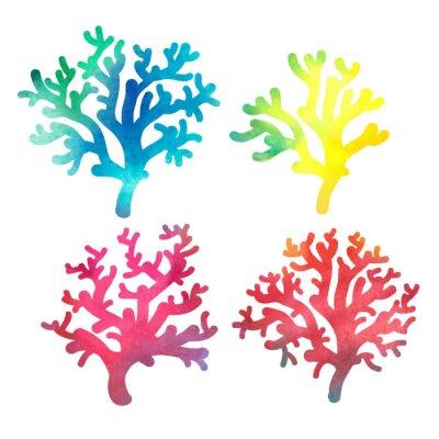 Poster desenhado à mão coral decorativo aquarela